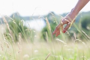 hand_grass