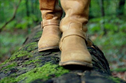 støvler_gren